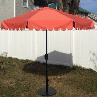 Scallop Umbrella